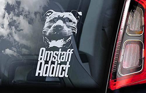 CELYCASY Amstaff Addict - Adhesivo decorativo para ventana de coche, diseño de Staffordshire Terrier Staffie Staffy Dog Sign - V01