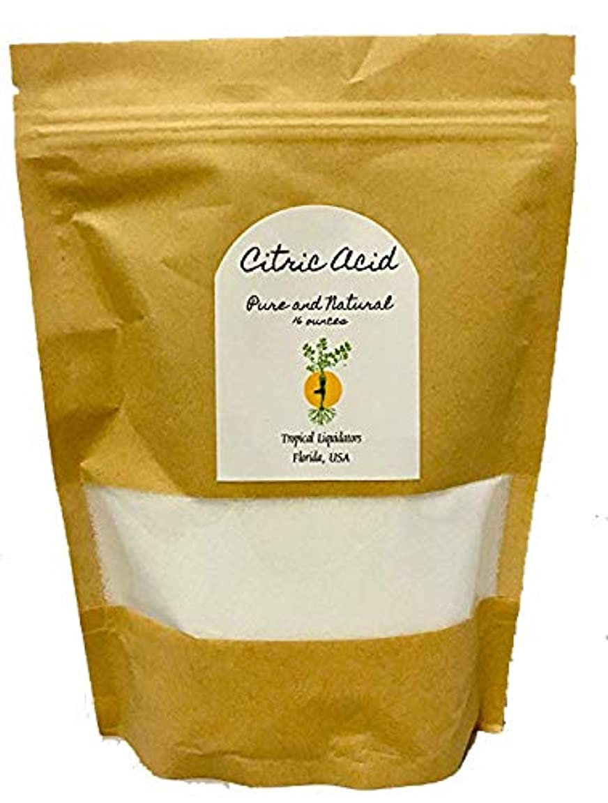 Citric Acid 16 oz 1 pound lb White Bath Bombs Fizzies Superfine Fine Powder for DIY Beauty Masks Pure Natural USA Face Wash Shower Gel Shampoo Soap making Food Grade nc034721055302