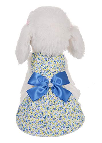 MSNFOASM Puppy Doggie Camisole Dress,Cute Princess Dog Vest for Small Dogs (Light Blue,XS)