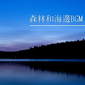 森林和海邊BGM - 大自然BGM為了放鬆,減少壓力和好好睡覺