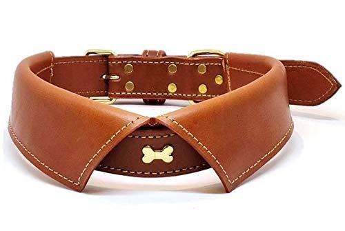 Dielay Luxus Halsband für Hunde Metalldekoration Knochen Echtes Leder (M, Braun)