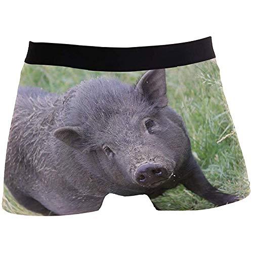 Adamitt Männer Boxer Briefs Tier Schwein Schwein Schwein Vieh Eber Unterwäsche Für Jungen Jugend Herren Polyester Spandex Atmungsaktiv