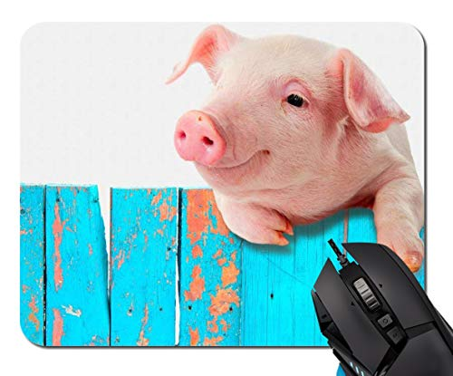 Mouse Pad,Mousepad Rectangle Non-Slip Rubber Mousepad Office Accessories Desk Decor Mouse Pads for Computers Laptop (Funny Pig Hanging On A Fence)
