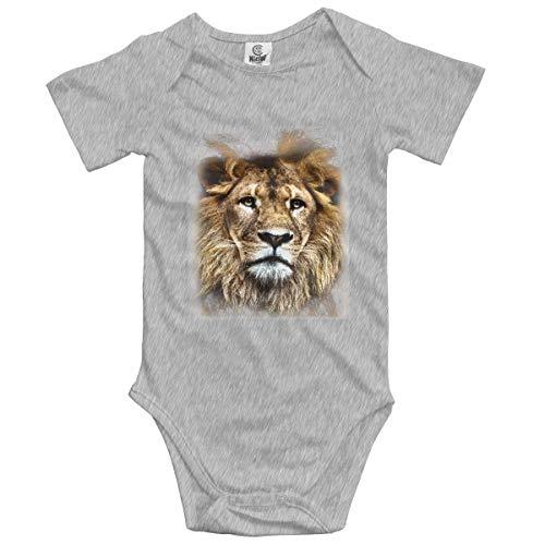 ZhangYu Bébé Garçons Filles Unisexe Combi-Short Barboteuse Lion Infantile Lpvely Combinaison Tenue 0-2 T Enfants