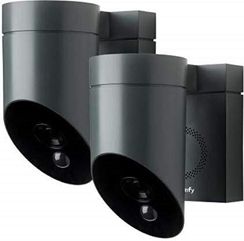 Somfy 1870472 - 2 graue Kameras für den Außenbereich | Überwachungskameras für den Außenbereich | Sirene 110 DB | Mögliche Verbindung zu einer vorhandenen Leuchte