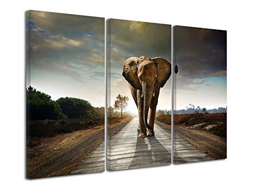 DECLINA afbeelding dieren op canvas, wanddecoratie, woonkamerdecoratie, afbeelding triptychon Afrika olifant 90 x 60 cm 120x80 cm Meerkleurig