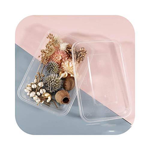 Fake Flower - Caja de flores secadas multi-Style de colores para plantas perfumadas con vela epoxi, resina, colgante, collar, bricolaje, artesanía, 5
