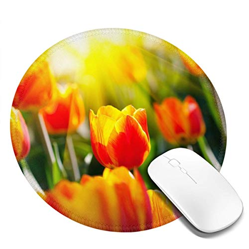 Small Round Mouse Pad 7.9x7.9inch Best Sunshine Non-Slip Rubber Desktop Working Mouse Mat Gaming Computer Pc Mousepad for Home/Office