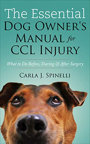 Top 10 best selling list for supplements for dogs after acl surgery