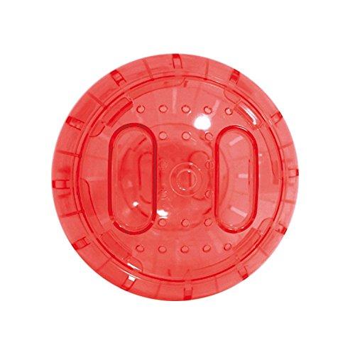 ICA GD10025 Bola de Ejercicios para Roedores, 25 cm
