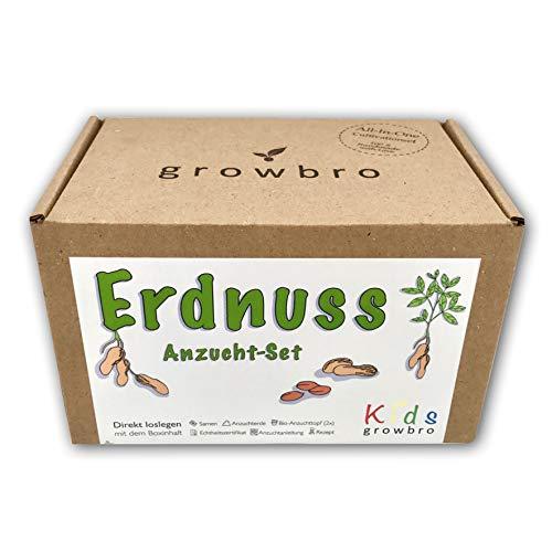 growbro Kids Erdnuss Anzuchtset, Garten Entdecker Set, Forscher Kinder, Natur entdecken, Geschenk für Kinder, Mitbringsel Kindergeburtstag, Zimmerpflanzen, Pflanzen Samen, Mitbringexperiment