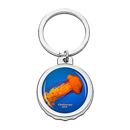 Hqiyaols Keychain USA Amerika Tennessee Aquarium Chattanooga Cap Flaschenöffner Schlüsselbund Creative Kristall Rostfreier Stahl Schlüsselbund Reisen Andenken