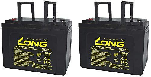 Batería compatible con Invacare Dragon Kung Long KPH75-12NE M6 12V 75Ah AKKUman...