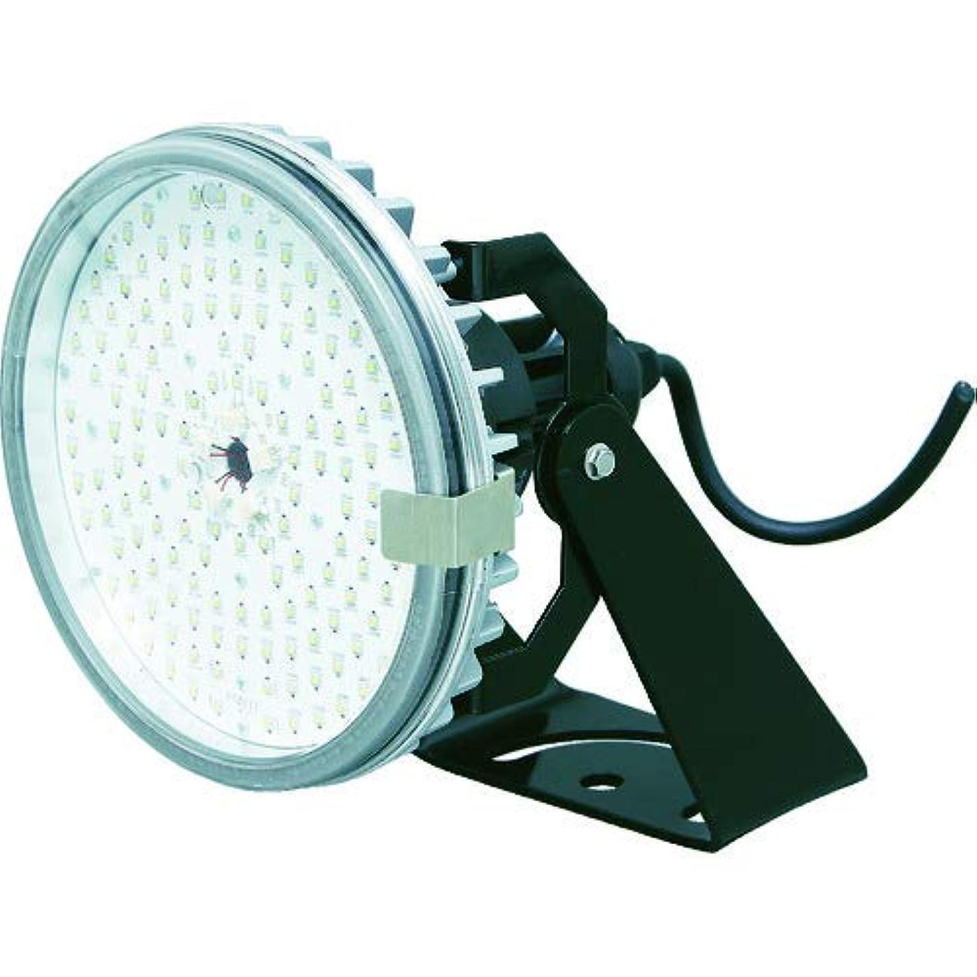 予定認知悪魔アイリスオーヤマ RZシリーズ 投光器タイプ水銀灯250W相当 ビーム角110° 62-8934-02