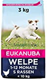 Eukanuba Puppy Small Breed Trockenfutter (für Welpen kleiner Hunderassen, Premiumnahrung mit Huhn), 3 kg Beutel