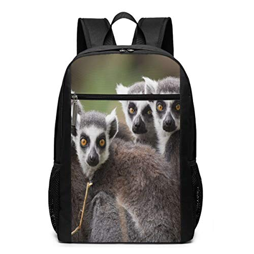 Ring-Tailed Lemurs Looking At You Camping Backpack Shoulder Rucksack Bag for Womens Mens Adults 17'