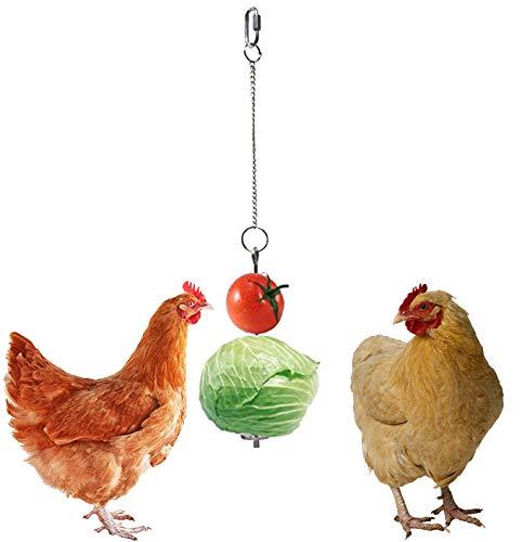 Bestine Huhn Obst Halter Edelstahl Gemüse hängende Futterstation für Vögel, Huhn und Kleintiere (1 Stück)