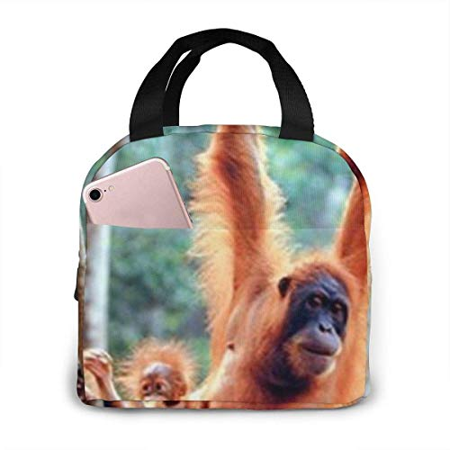 shenguang Orangutan and Baby Waving Monkey Lunch Bags for Women Portable Insulated,Thermal Cooler Bag Adult Lunch Tote Lunch Boxes,Reusable Meal Prep Containers Bag Sturdy for Work Picnic Co