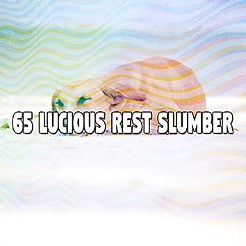 65 Lucious Rest Slumber