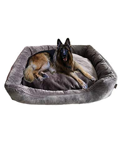 RAIKOU zacht hondenbed met afneembaar kussen, gewatteerd wasbaar huisdierbed hondenkussen hondensofa hondenmand, 100 x 80cm, bruin