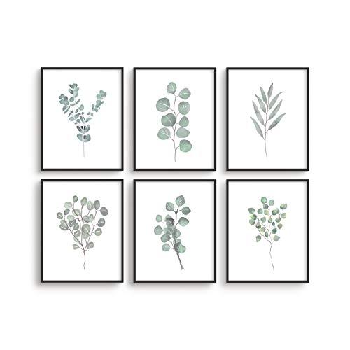 Leaf Prints Botanical Wall Decor - By Haus&Hues | Set of 6 Botanical Art Prints & Eucalyptus Leaves Wall Decor | Botanical Prints Wall Art Eucalyptus Wall Decor Plant Decor | Unframed, 8' x 10'