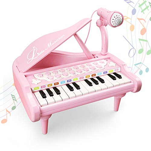 Litaonner Piano Toy for Baby 1 2 3 Year Old Girl Birthday Gift 24 Keys Pink Musical Instrument Toddler Toy Piano Keyboard