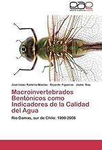 Amazon.es: Jaime Figueroa: Libros
