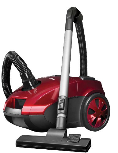 Why Should You Buy ReadiVac Surge Canister Vac