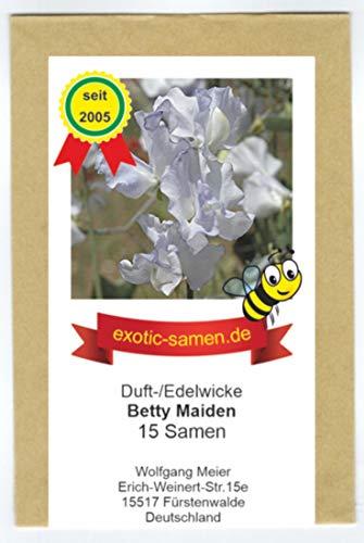 Edelwicke - Duftwicke - Bienenweide - Betty Maiden - bis 180 cm - 15 Samen …