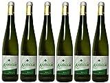 Campo Anhelo Riesling Fermentado en barrica - vino blanco - Vino de la Tierra de Castilla- UGM Campo de Calatrava - 6 botellas de 750 ml- total 4500ml