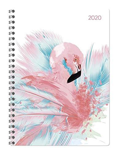 Ladytimer Ringbuch Flamingo 2020 - Taschenplaner - Taschenkalender A5 - Schülerkalender - Weekly - Ringbindung - 128 Seiten - Terminplaner