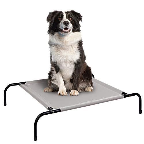Las mejores camas de campamento para perros del 2021