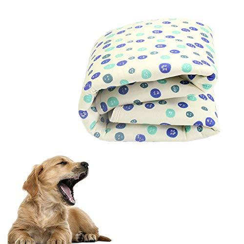 Evazory Puppy Pad Dog Toilet Pet Training Pads Tapis d