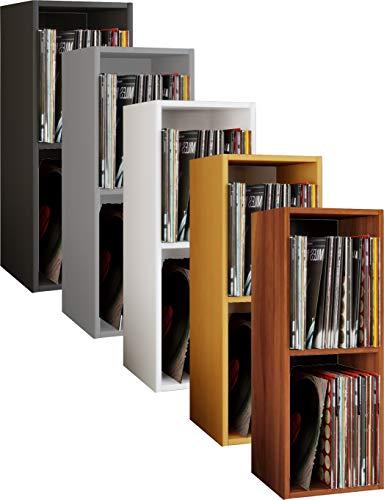 VCM Schallplatten Regal Archiv LP Möbel Archivierung Platto 2fach Kern-Nussbaum