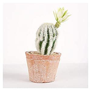 Silk Flower Arrangements YCSX Fake Plants Artificial Tree Faux Plants Artificial Succulent Plants Artificial Cactus Mini Fake Cactus for Home Decor and Office Decoration Greenery Decoration