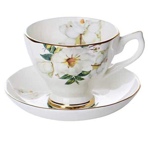 Vajillas Porcelana Inglesa 12 Servicios vajillas porcelana  Marca