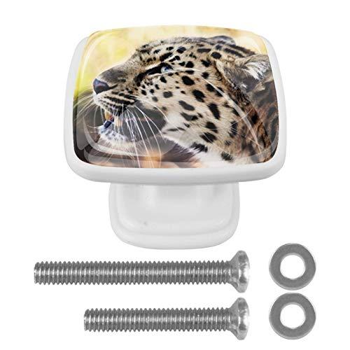 Pomo de armario Leopardo Pomos Cuadrados, 4 x Tirador de Cocina, Muebles para Armario, Puerta Armario, Gabinete, Cajón, Puertas de Muebles, Zapateros 3x2.1x2 cm