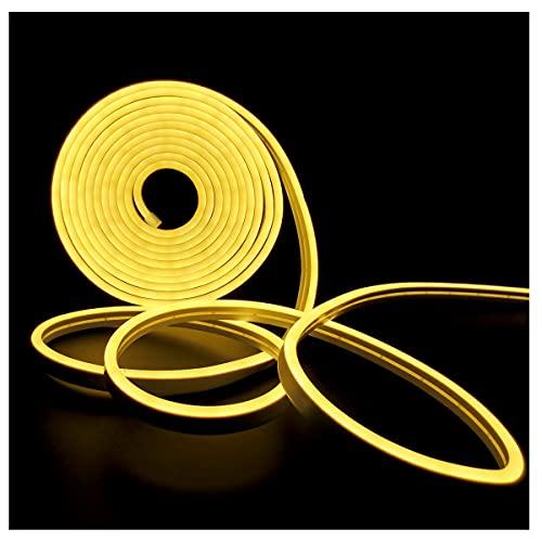 Tira de luz LED de Neón, Tesfish Tiras de Luces DC 12V 5M 120 LEDs / M Total 600 LEDs Blanco Cálido 3000K Luz de LED IP65 Flexible para Dormitorio, Bar, Sala de juegos, Cumpleaños, Fiesta de N