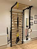 ARTIMEX Stall Bars Metal/Wood (Swedish Ladder) for Physical Therapy and Gymnastic - Used in Homes, Clinics and Fitness Centers - 7 feet, 10 1/2 x 2 feet, 11 1/2 inches, Spartan Model, Code 277/black