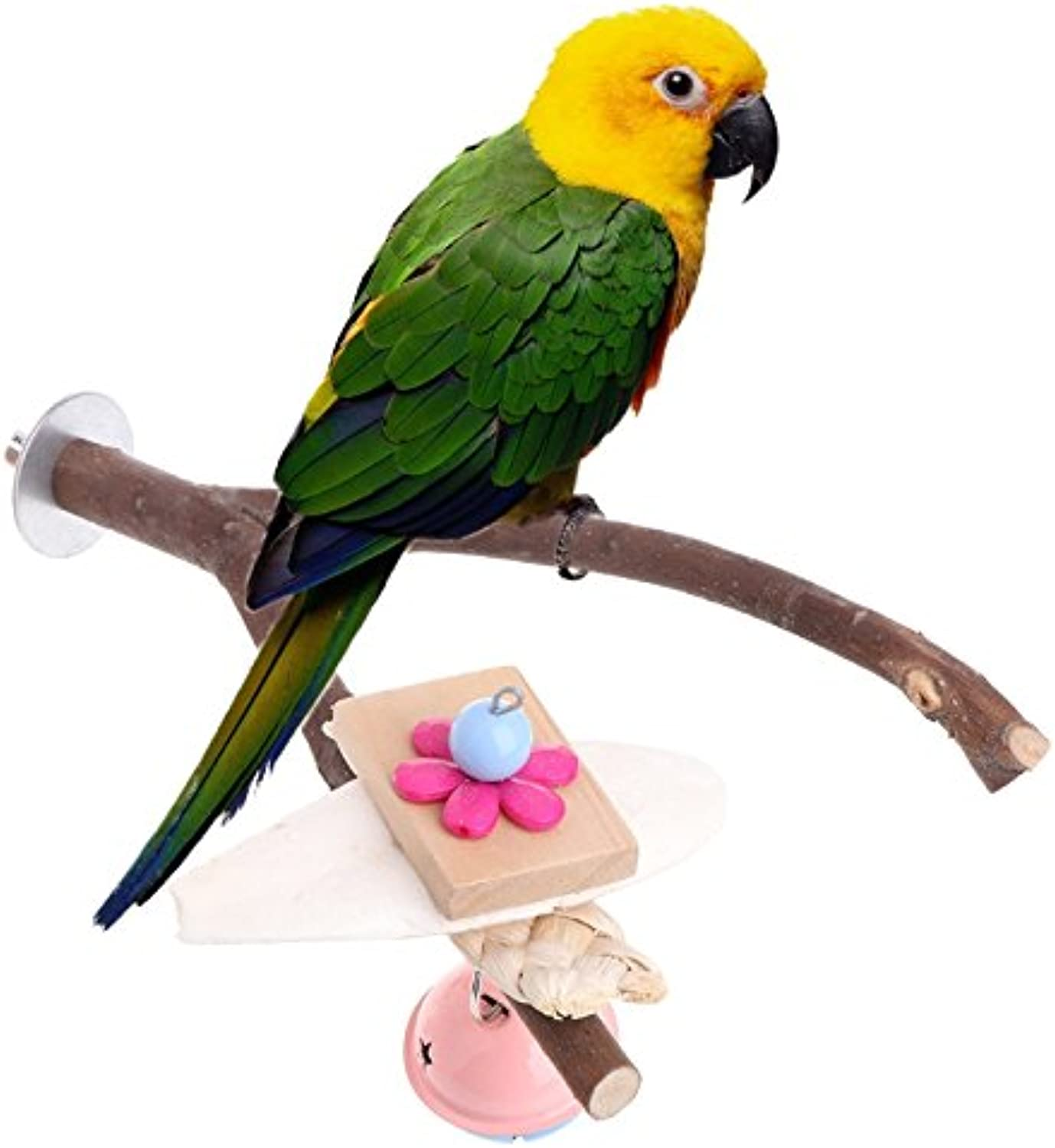 1Pc Pet Bird Natural Woods Cage Stand Platform Parakeet Paw Grinding Chew Bite