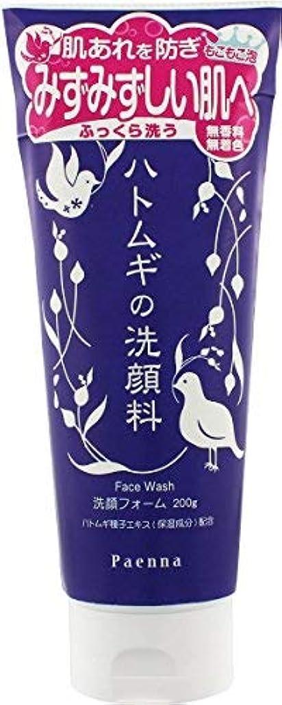 小説マスク瞳イヴ パエンナ ハトムギの洗顔料 200g × 18個セット