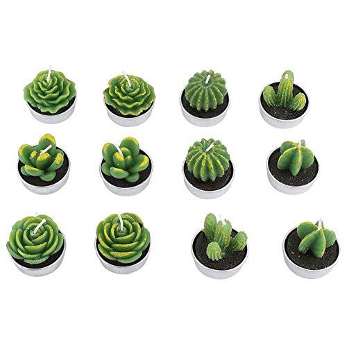 12 Piezas Velas, Cactus Velas, en Forma de Planta Suculenta Cactus, de Parafina, Regalo para Amigo, Familiar, para Fiesta de Cumpleaños