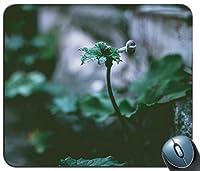 緑の葉の植物のセレクティブフォーカス写真パーソナライズされた長方形のマウスパッド、印刷された滑り止めゴム快適なカスタマイズされたコンピューターマウスパッドマウスマットマウスパッド