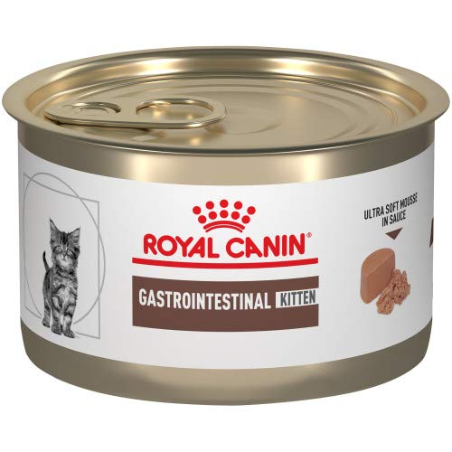 Royal Canin Feline Gastrointestinal Kitten Ultra Soft Mousse in Sauce Canned Cat Food, 5.1 oz