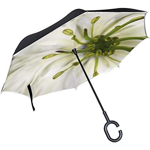 Double Layer Inverted Virgin In Der Grünen Nigella Blume Nigella Damascena Umbrellas Reverse Taschenschirm
