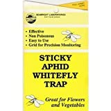 Sticky Aphid Trap