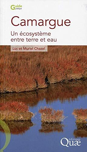 Camargue: Un écosystème entre terre et eau.