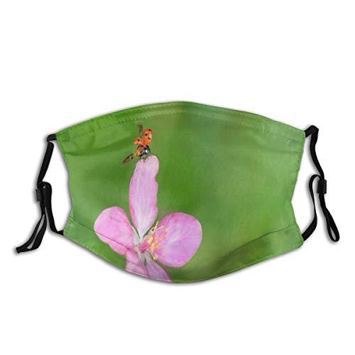 DYCBNESS Face Cover Garten Marienkäfer auf Schönheit Blume Kirsch Blütenblatt verschwommen Kleintiere Wildlife Nature Wiederverwendbare Anti-Staub-Mund-Bandanas mit 2 Filtern