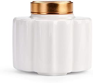 PPCP Mini Funeral Urn, Cremation Urns, Adults Pet Urn, American Light Ceramic Pot Storage Ashes with Cover Seal Moisture-P...