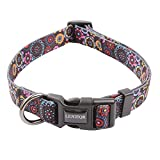 Dog Collar for Girl Dog,Puppy Dog Collar Cute Girl Dog Collar with Safety Buckle Adjustable Dog Collar for Puppy Small Medium Large Dogs